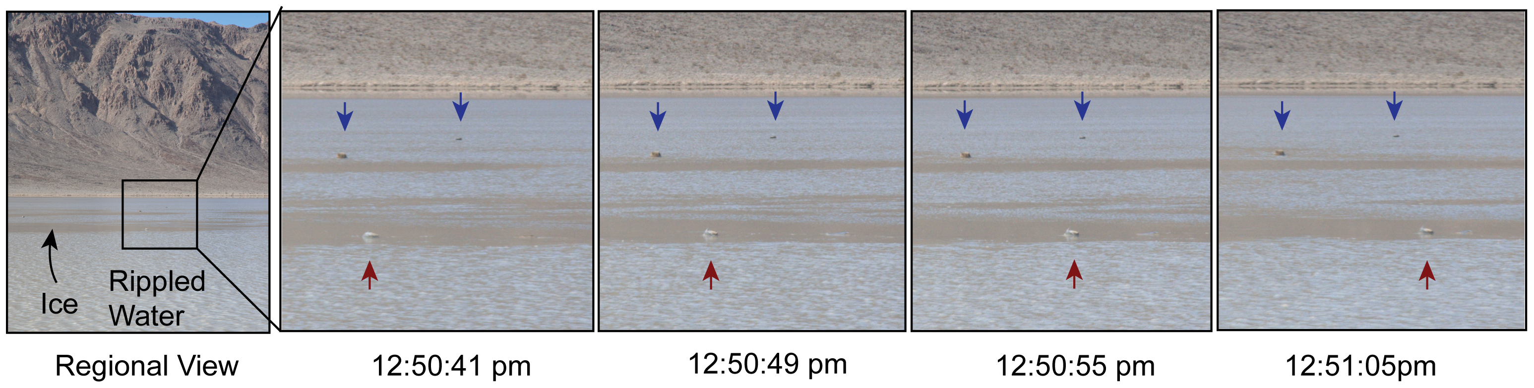 Images of a moving rock, from time-lapse video. Source: Figure 1, Sliding Rocks on Racetrack Playa, Death Valley National Park: First Observation of Rocks in Motion. doi:10.1371/journal.pone.0105948.g001