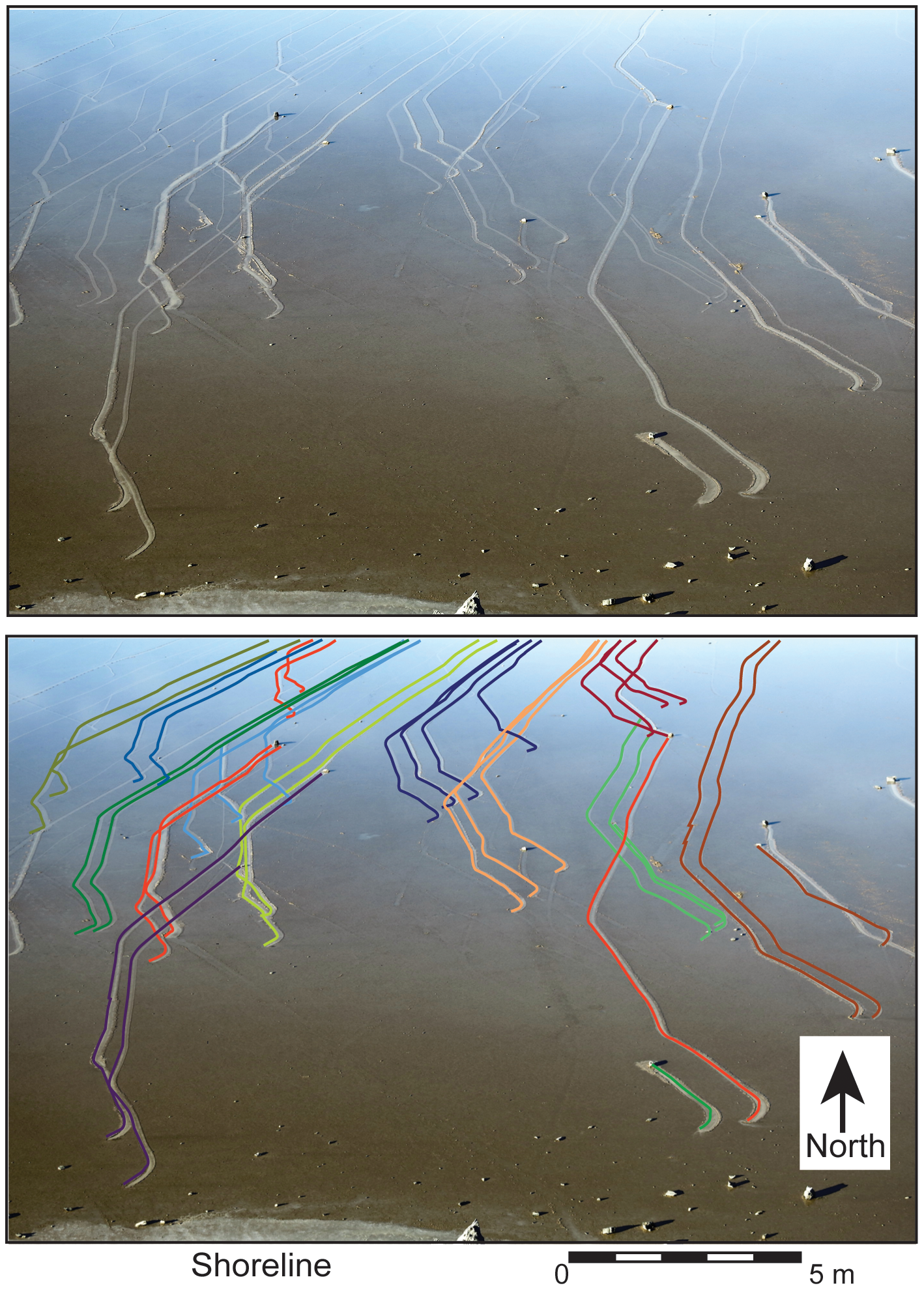 Rock trails on the Racetrack Playa. Source: Figure 2, Sliding Rocks on Racetrack Playa, Death Valley National Park: First Observation of Rocks in Motion. doi:10.1371/journal.pone.0105948.g002