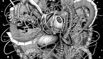 Originally posted at http://www.behance.net/gallery/Dark-Water-the-collection-of-illustrations-for-carpets/2736351