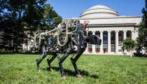 Photo Credit: Jose-Luis Olivares/MIT. MIT Description: The MIT cheetah-bot in Killian Court.