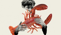 "The Lobster: ""This gripping tale of one man's quest for the Red Lobster is a timeless epic - a stirring tragedy of vengeance and obsession, a searing parable about humanity lost in a universe of moral ambiguity. It is the greatest seafood story ever told."""